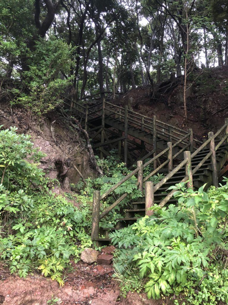 舘山寺の山