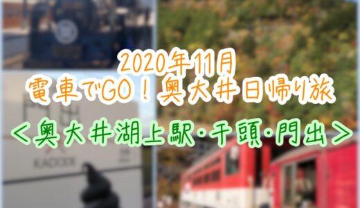 【11月静岡旅】電車でGO!奥大井日帰り旅